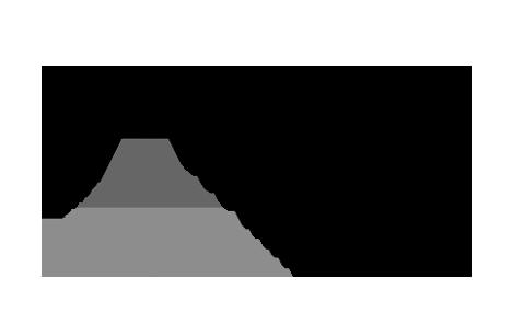 Logo_BMI_sw