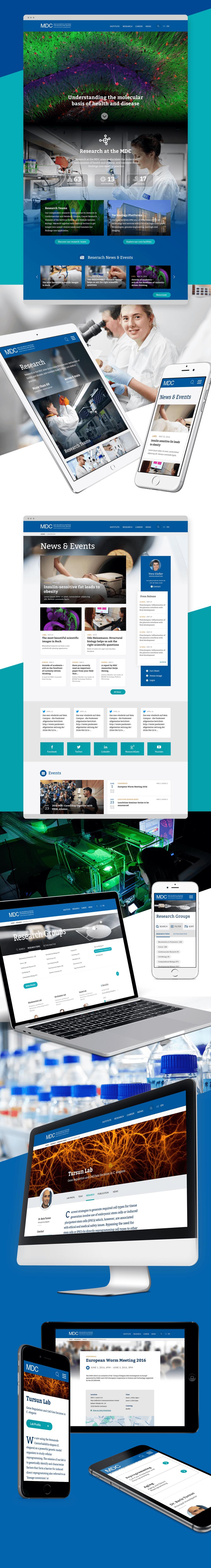 "Projektaufbereitung ""Website Relaunch von mdc-berlin.de"""